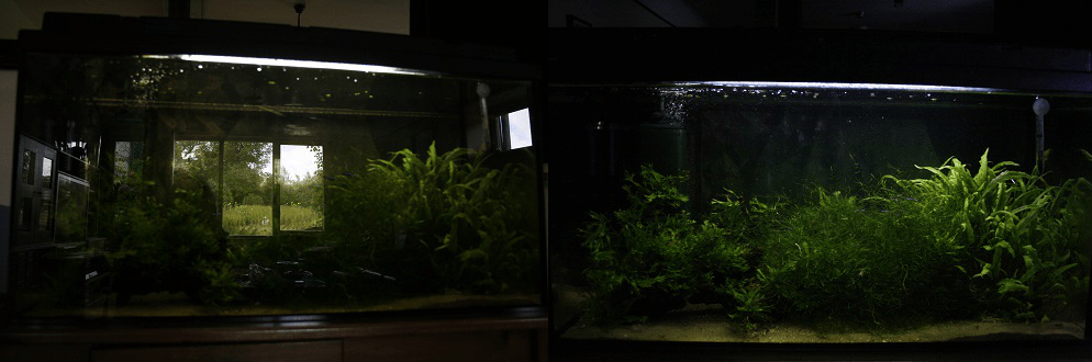 Even in a not so great photo, closing the curtains makes a huge difference!