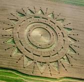 Crop Circle 11541999_10204322395889309_3930000927237650629_n