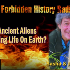 Are Ancient Aliens Controlling Life On Earth? – Sasha Lessin – Forbidden History Radio