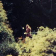 Bigfoot 25a