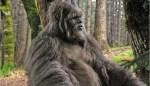 Bigfoot-Destroys-Apple-Orchard