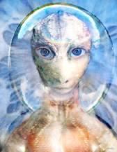 Reptilian with human eyes 11081440_419937324854389_6759567543210185266_n