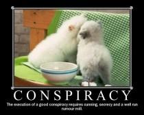 67257-conspiracy-kittens