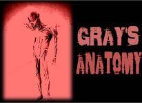aliengrays-Grays-Anatomy