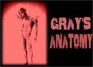 aliengrays-Grays-Anatomy