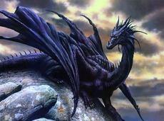 black_dragon-2