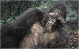 Bigfoot big_man_5