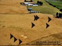Armstrong-Crop-Circle-2