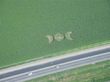Canadian Crop Circle matsqui04a