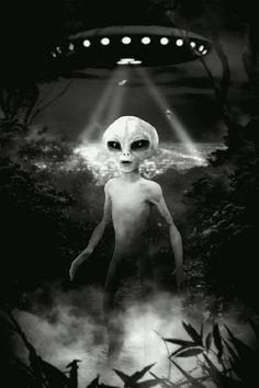 aliens grey aliens fcdb9937e380ab09ee5eb3208c6edf1d