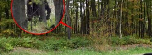 Kewaunee & Kelly Lapseritis bigfoot1-820x300