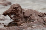 oil-spills-montana-oil-spill-renews-concerns-about-aging-pipeline-system