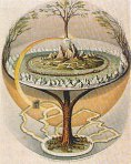 Trees of Life & Knowledge Yggdrasil