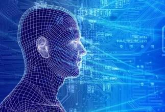 Quantum Hologram braingridcircuitboard