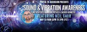 Neil Gaur Sound Vibration images