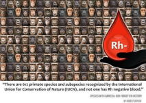 RH Negative Blood 12669437_1719115451645746_6506456705182858871_n