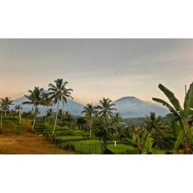 Way To Ijen Volcano