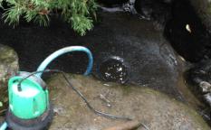 庭池 提供