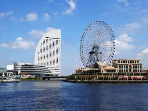 横浜市の水槽レンタルの相場は?