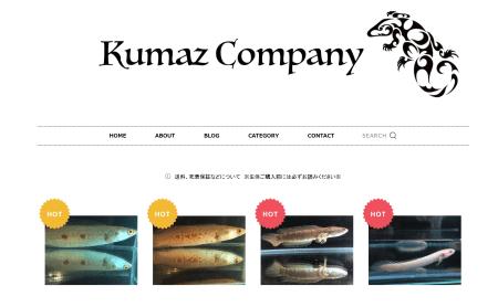 愛玩動物飼養管理士が運営するペットショップ「KumazCompany(クマズカンパニー)」をおすすめする理由