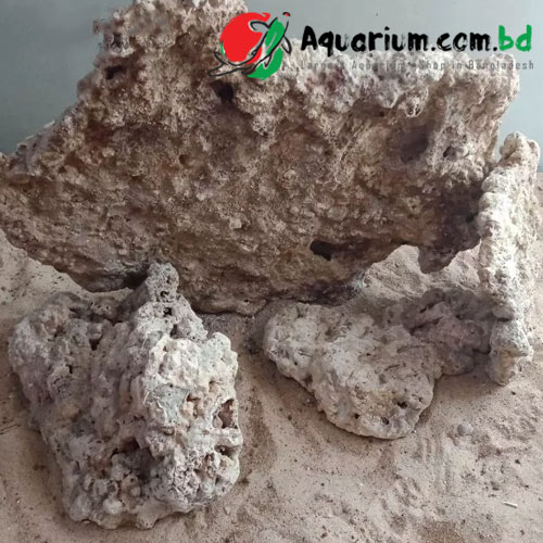 Live Rock 4kg Package