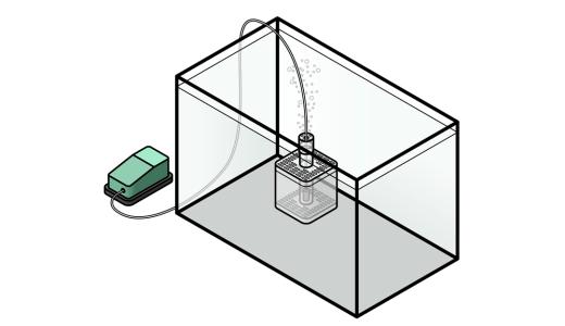 """小型水槽の金魚飼育に最適! """"エアポンプ接続フィルター""""の特徴"""