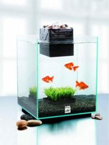 http://homeae.info/wp-content/uploads/2012/10/Home-Small-Aquarium-Ideas-Creative.jpg