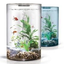 https://nikhil749.files.wordpress.com/2013/03/aquarium.jpg