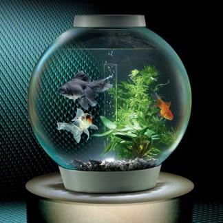 wpid-biorb-self-filtering-aquarium-xl.jpg