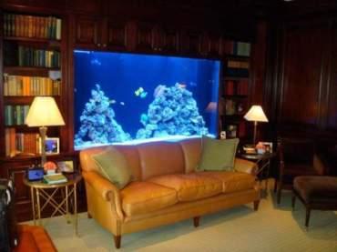 http://homeae.info/wp-content/uploads/2012/10/Natural-Aquarium-Ideas-Design.jpg
