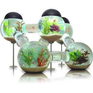 http://homesdir.net/wp-content/uploads/2013/02/unique-luxury-aquariums-the-right-step-to-care-beautiful-aquarium-in-your-home.jpg
