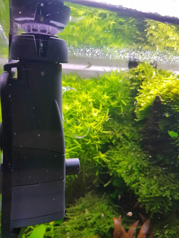 skimmer aquarium
