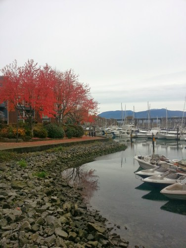 I took a similar photo the first time I made my way to Granville Island. This time, the Granville Island Harbour is full of colour. Oh, as the leaves change!