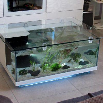table basse aquarium odyssee aquarium