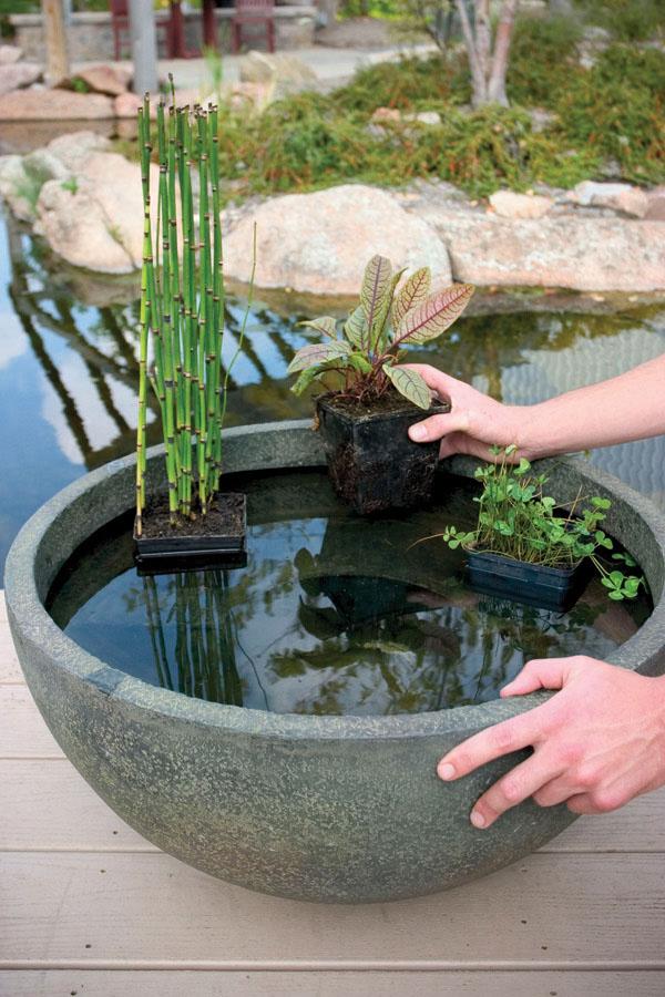 Pond Filter System