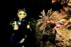 Spécialité Nuit Padi plongée Lanzarote