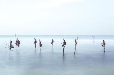 Pescuit pe catalige, Matt Porteous, NG Your shot