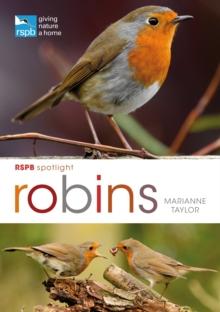 RSPB Spotlight Robins