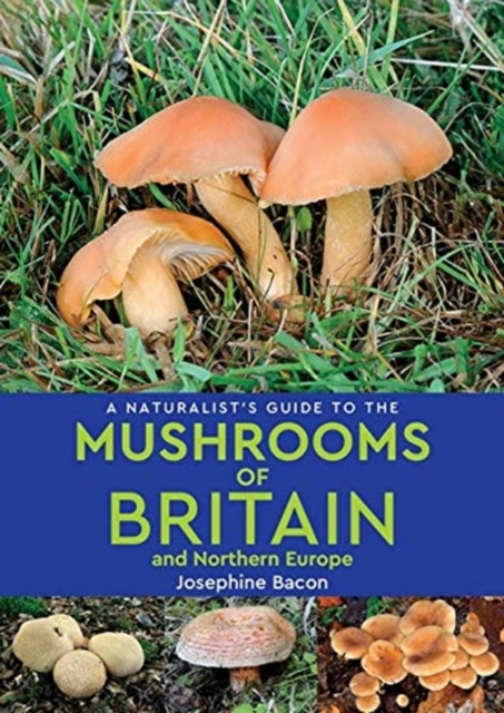 Naturalists Guide to Mushrooms of Britain