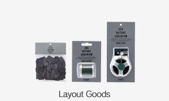 Layout Tools