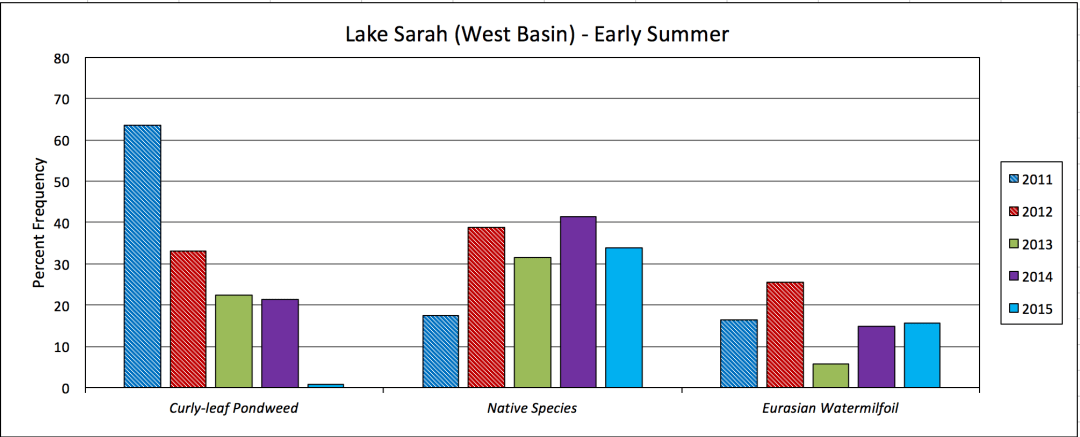 Lake Sarah - West Basin - Early Summer