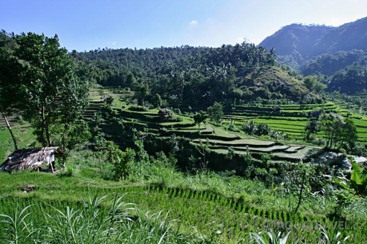 Abang - terasovitá rýžžová políčka