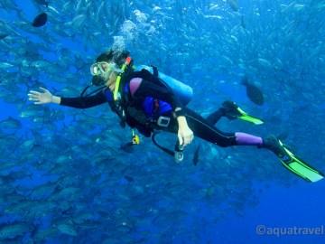 Potápění na Bali s kranasy.