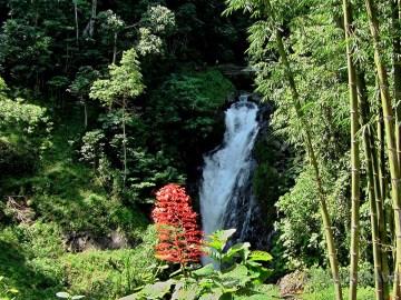 Vodopád Git Git na severu Bali