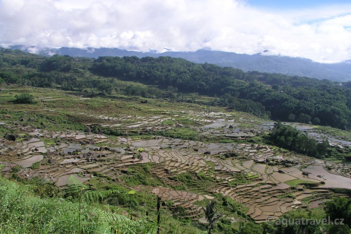 Batutumonga - rýžžová políčka kraje Toraja na Sulawesi