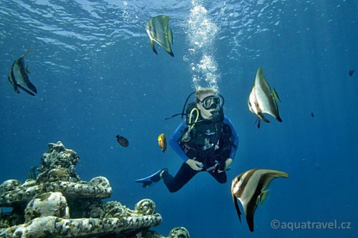 Potápění Bali Amed