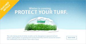 Leaf Shield Featured post artwork