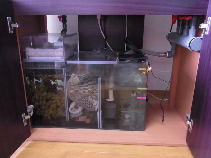 濾過槽を掃除するタイミングと方法