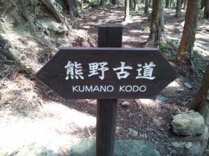 世界遺産・熊野古道行ってきたよ!牛馬童子~継桜王子コース