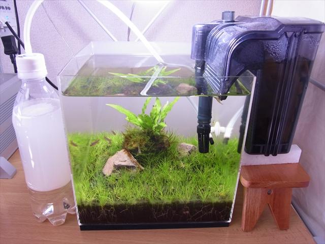発酵式CO2添加装置を水槽に設置